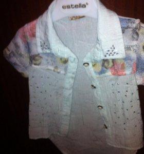 Комплект шорты , рубашка, 2 года