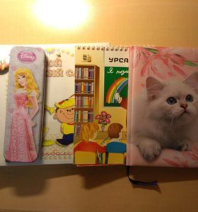 Школьный дневник, пенал, блокнот, значок, альбом