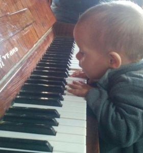 Настройка пианино. Ремонт, чистка, регулировка...