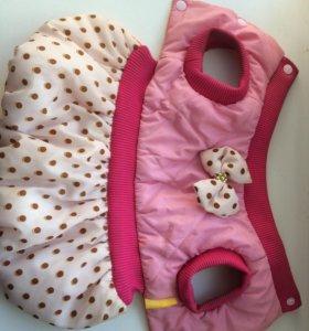 Тёплое платье для собак мелких пород