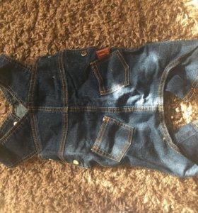 Продам джинсовый комбинезон для собак