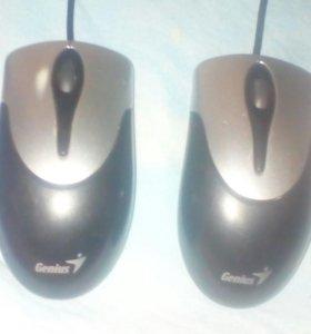 Компьютерные мыши.