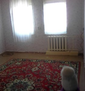 2-хКомнатная квартира