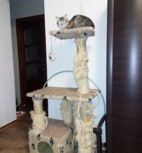 Ремонт домика для кошки