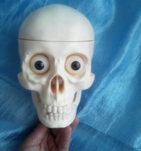Скелет Артём