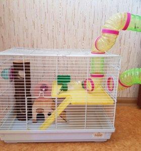 Клетка для средних и мелких грызунов