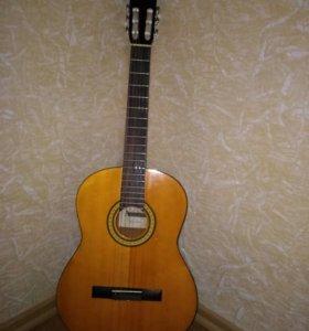 Гитара Augusto SCG 100