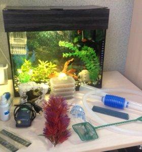 Аквариум, рыбки, аксессуары