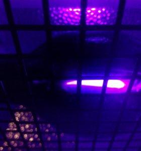 УФ светильник IMLIGHT