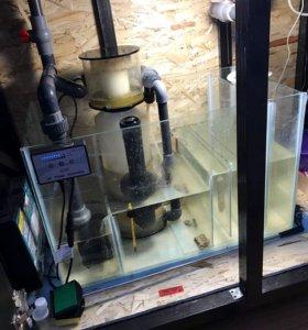Самп в морской аквариум,без оборудованич