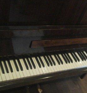 "Фортепиано ""Дружба""."