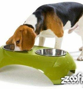 Столик с мисками для собак