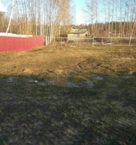 Участок в деревне Голышево