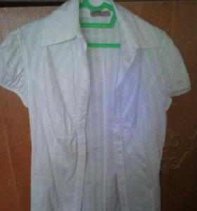 Блузы, футболка