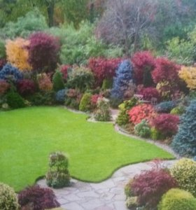 Ландшафтный дизайн,озеленение вашего участка