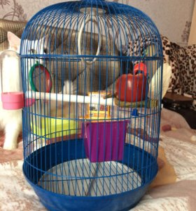 Клетка попугаям