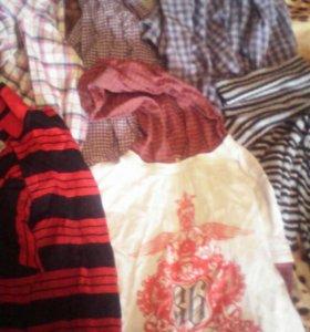 Рубашки, водолазки
