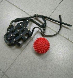 Намордник и мячик
