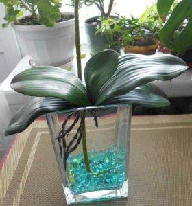Гидрогрунт шарики для растений 100шт.