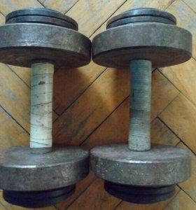Гантели разборные СССР по 10 кг