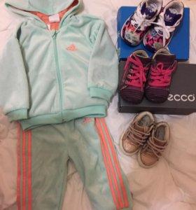 Костюм adidas, кроссовкиadidas, ботинкиEcco , кеды