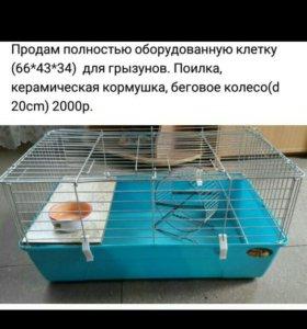 Клетка для крупных грызунов