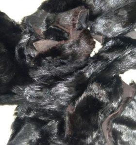 Мех бобра черный