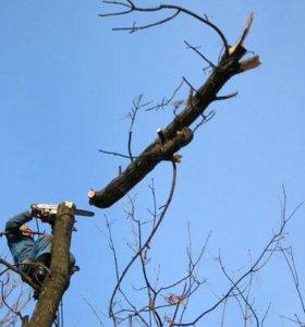 Спил деревьев, благоустройство участков
