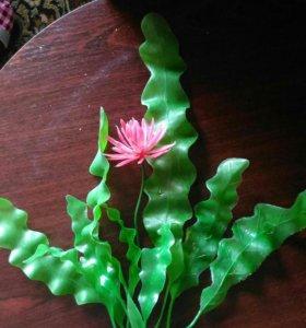 Искусственные растения в акву