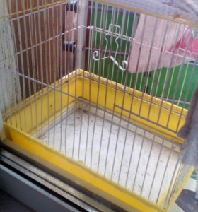 Клетка(жил попугай)