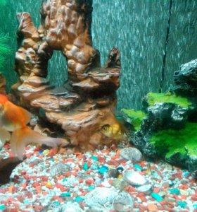 Продам аквариум 320 л
