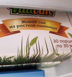 Сок из проростков пшеницы