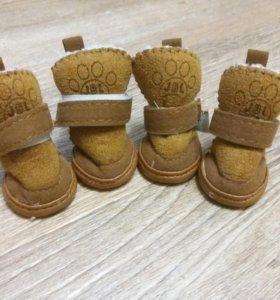 Обувь для собак (xs)