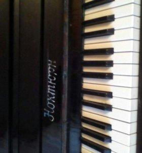 Пианино Ноктюрн!