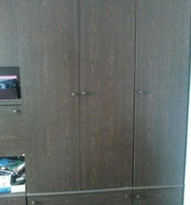 Шкаф двухпольныи от стенки плюс пенал.
