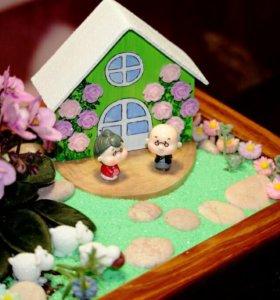 Мини садик, комнатные цветы.