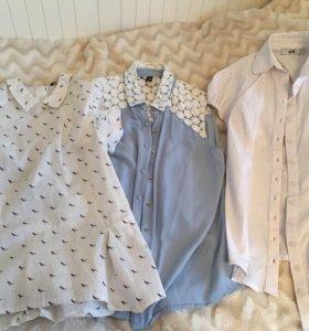 Рубашки 3 шт
