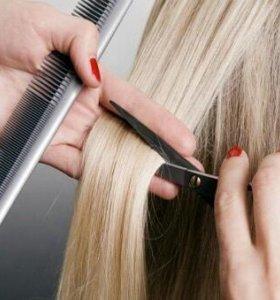 Высшие курсы  парикмахер - стилист-визажист.