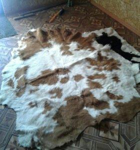 Шкура коровы выделанная, ковер ручной работы