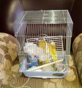 Клетка для попугая