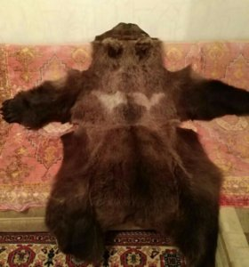 Ковер из медведя