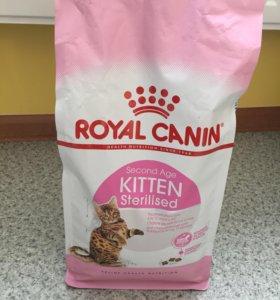 Royal Kanin для котят от 6 до 12 месяцев