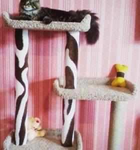 Изготовление мебели для кошек