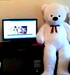 Плюшевый медведь #: 7633