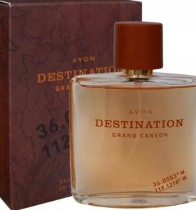 Dastination for him avon
