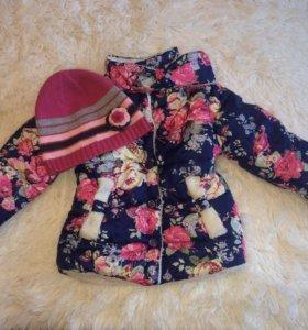 Куртка и шапка весна-осень