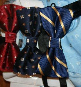 Бабочки и галстуки