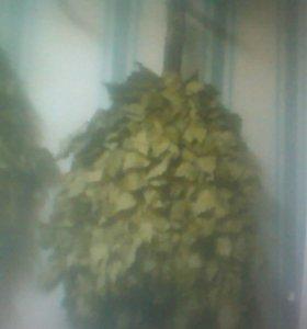Веники дубовые для бане