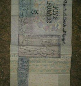 5 Египетских паундов, фунтов