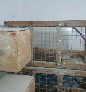 Клетки и домики для птиц